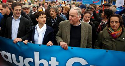 Verfassungsschutz AfD'yi takip edecek
