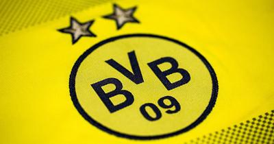 Dortmund lig ikinciliğini garantiledi