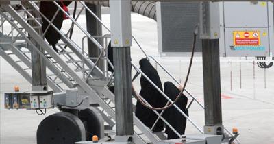 Sınır dışı edilen terörist savaşçılar Almanya'ya geldi