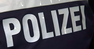Alman polisi hakkında ırkçılık araştırması