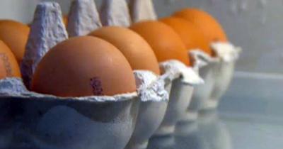 Yumurtanın birçok faydası bu haberde